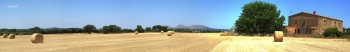 Camp de blat, a PALS, als fons es veu el Castell de Montgrí - Catalunya