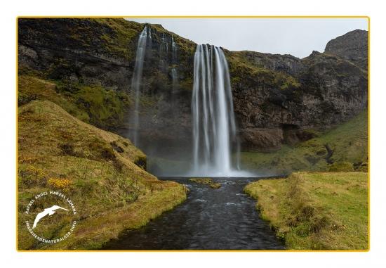 Seljalandsfoss (Islandia)
