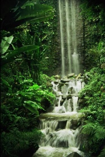 Parque natural Singapur
