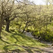 Foto La Cueva de Ágreda. Los Prados. Moncayo. Pesca.