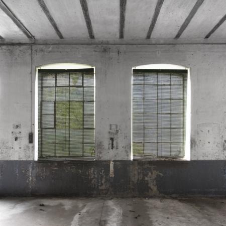 two venetian blinds