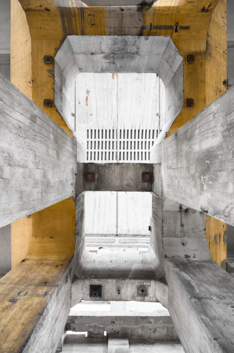 the concrete pachidermus