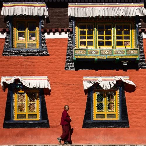 Himalayan Trails