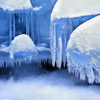 Icy Jellyfish