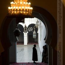 722-Mezquita, Fes, Marruecos