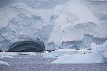 Iceberg, Paradise Harbour