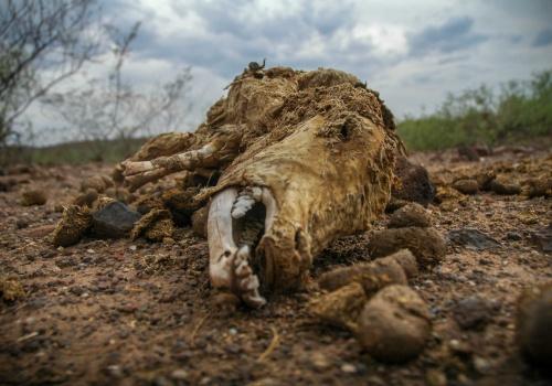 Sequía en Durango
