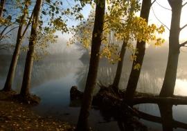 """porfolio: """"espejismos""""   título: """"en el río aquel, tu y el amor"""""""