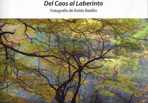 Catálogo exposición Del Caos al Laberinto