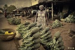 Piñas en Benin.