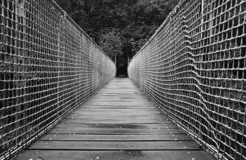 Suspension bridge | 2013 | Fragas del Eume - A Coruña, Spain