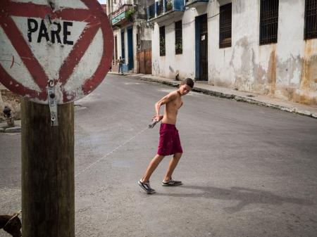 stop for a dog, a funny picture in havana´s street in a photo workshop by louis alarcon