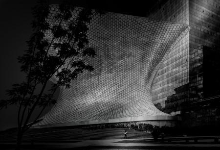 Museo Soumaya (Ciudad de México)