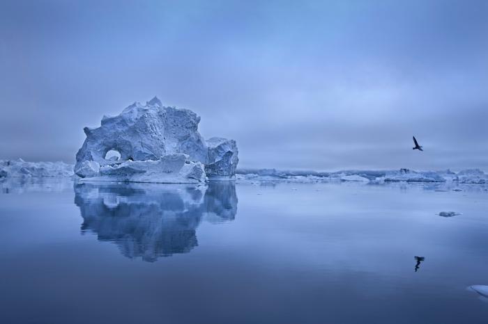 Ice Fjord. Groenlandia
