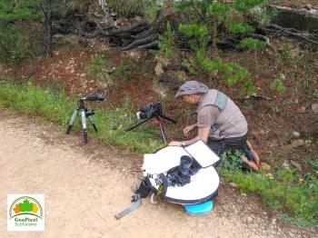 Raimon Santacatalina Fotógrafo de Naturaleza Geopixel Ecoturismo Beceite Orquideas