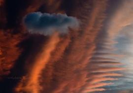 Cumulus humilis sobre altocumulus lenticularis