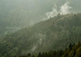 Primera lluvia de otoño. Añisclo