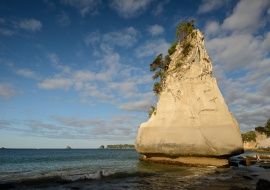 Sandstone cliffs, Cathedral Cove, Hahei, Waikato