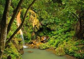 Caldeira Velha. Isla de Sao Miguel