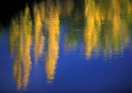 Reflections at fall