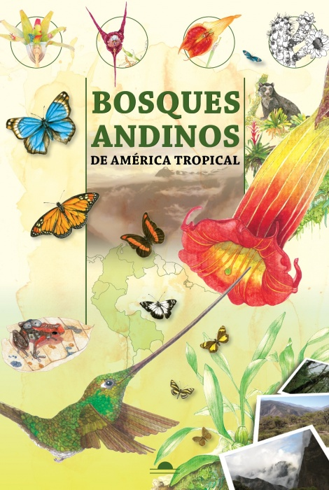 Bosques andinos de america tropical