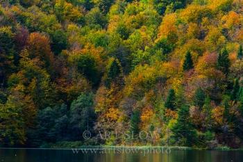 Compitiendo por la Luz - Parque Nacional de los Lagos de Plivitce, Croacia. Edición: 10/10 + 2P/A
