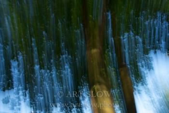 El Agua es Blanca - Wageningen, Holanda. Edición: 10/10 + 2P/A