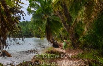 2002-9285-Caribe Idílico, Bocas del Toro,Isla de Colón, Panamá