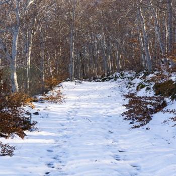 Moncayo invernal