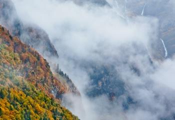 Valle de Pineta entre la magia de la niebla...