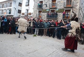Onso sujetado por tranga en la plaza de Bielsa