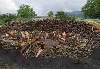Preparando la base para armar la carbonera
