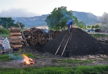 """Dando el Betagarri"" a la carbonera"