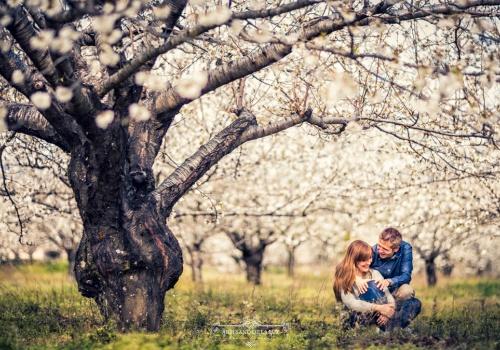 Artesano de la Luz - Sesión de preboda entre los cerezos en flor del Valle del Jerte