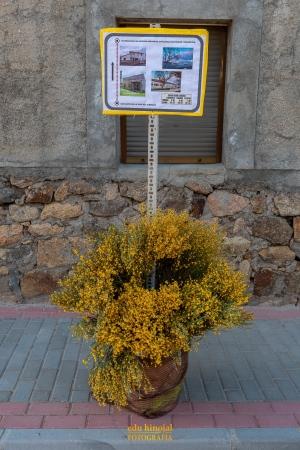 Decoración San Martín de la Vega foto 3