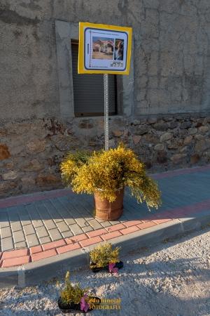 Decoración San Martín de la Vega foto 4