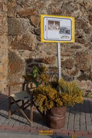 Decoración San Martín de la Vega foto 7