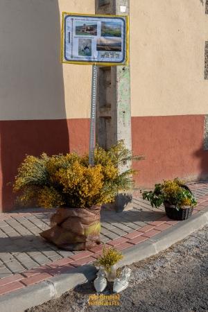 Decoración San Martín de la Vega foto 11