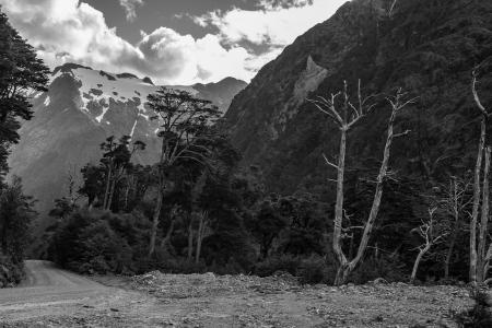 El Lobo, Parque Nacional Queulat, Carretera Austral. Aysén.