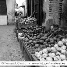 721-Fes, Marruecos