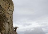 Equilibrios - Pirineos