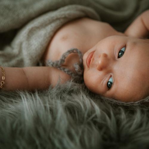 El pequeño Rafael