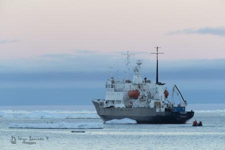 Polar Pionner, Brown Bluff