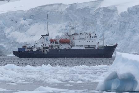 Polar Pioner, Neko Harbour