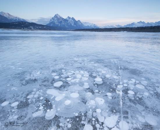 Preachers Point, Abraham Lake, Kootenay Plains, Pano 3 Imagenes Canon TS 24mm