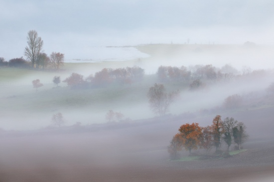 Llanada, lautada, araba, álava, euskadi, paisaje, niebla, fotografía, árboles