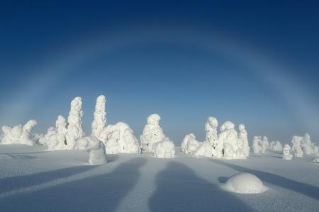 Arco de niebla, Riisitunturi, Finlandia, Febrero 2013.