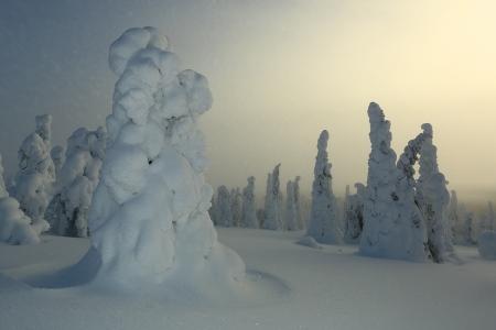 El resplandor, Riisitunturi, Finlandia, Febrero 2013.