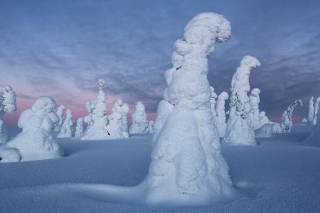 Riisitunturi, Finlandia, Febrero 2013.