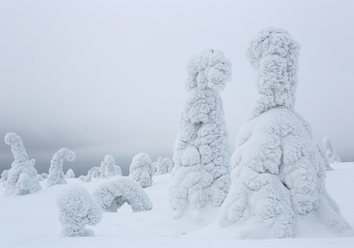Talking, Riisitunturi, Finland, February 2013.